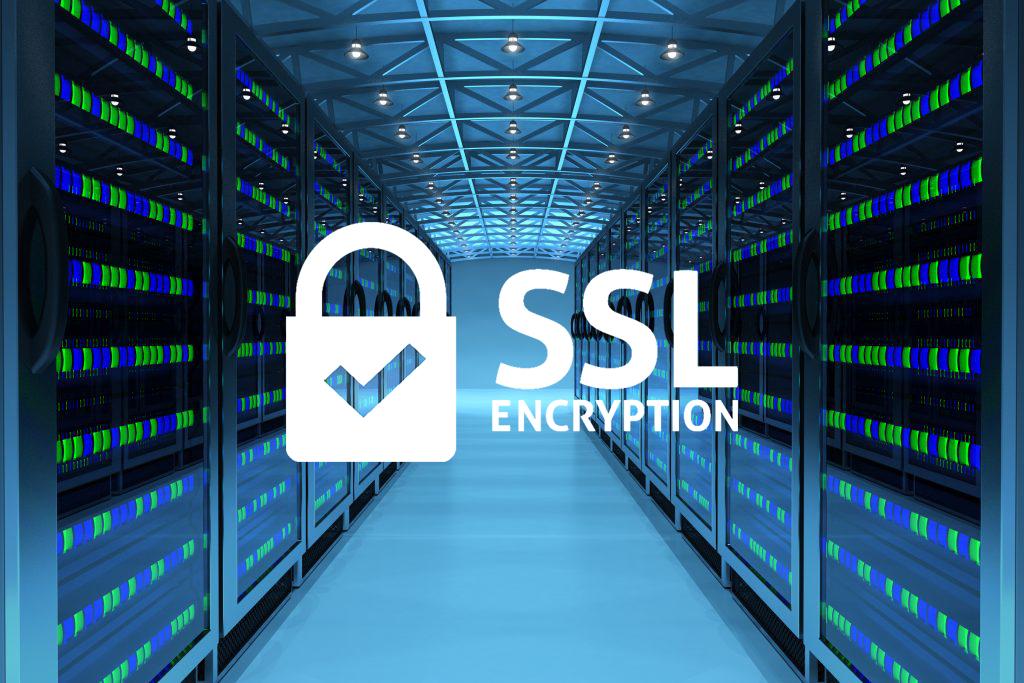 【表で解説】レンタルサーバーにより対応するSSL証明書の種類は違う?